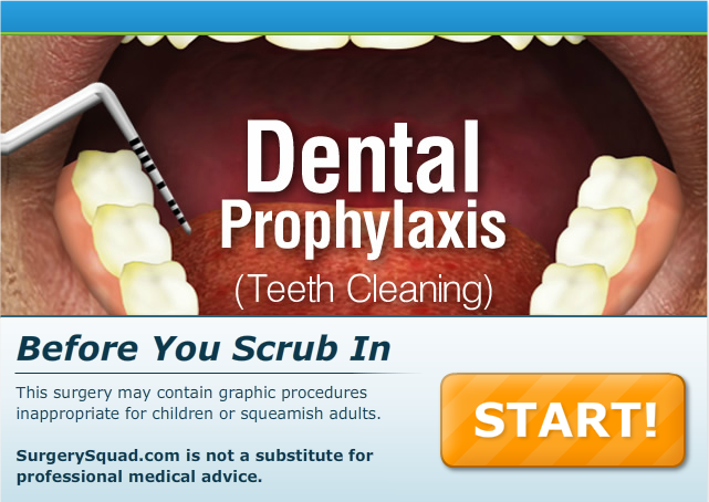 Dental Prophylaxis (Teeth Cleaning)