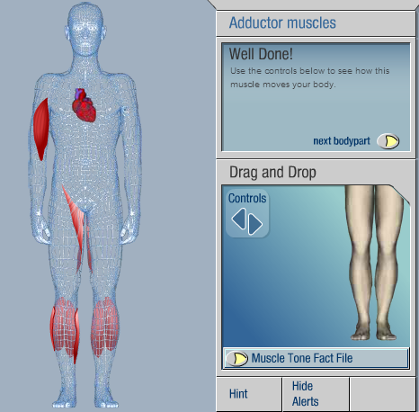 Interactive Body
